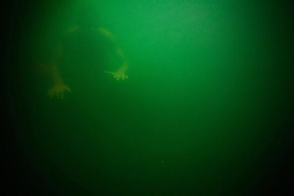Gilvan Barreto apresenta olhar sobre o mar em novo livro ''Sobremarinhos'' - Gilvan Barreto/Divulgação