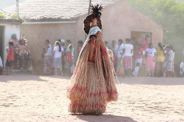 Com a queda do primeiro umbu maduro, os pankararus iniciam seu ritual, em virtude de como acontecerá sua safra anual. Foto: Brenda Alcântara/Esp. DP -