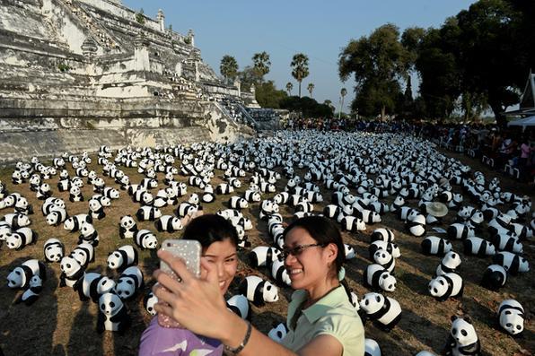 Pessoas tiram fotos em frente de pandas feitos de papel machê criados pelo artista francês Paulo Grangeon no Golden Mount em Ayutthaya, na Tailândia. Foto: Lillian Suwanrympha/AFP  -