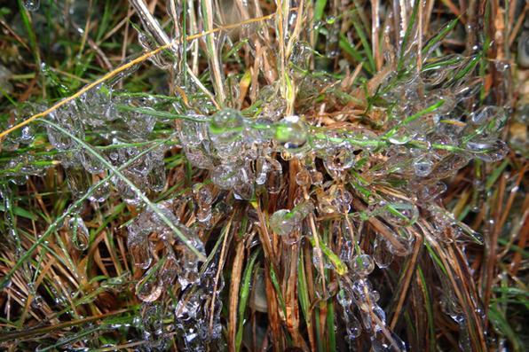 O dia amanheceu gelado na Serra Catarinense . Em Urupema, a temperatura chegou à marca dos 2.8º abaixo de zero, segundo medições da Epagri/Ciram. Foto: Marília Sutil/ Prefeitura de Urupema -