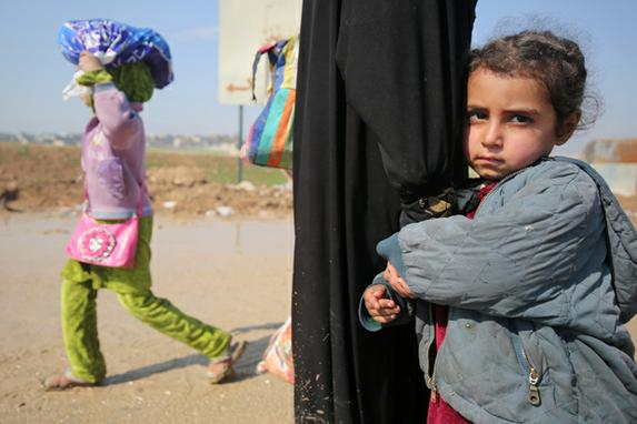 FOTOS DO DIA (Os iraquianos caminham em direção aos campos de refugiados depois de fugirem de sua cidade durante as ofensivas do governo para retomar a cidade dos combatentes do grupo islâmico (IS).  AFP PHOTO / AHMAD AL-RUBAOYE)