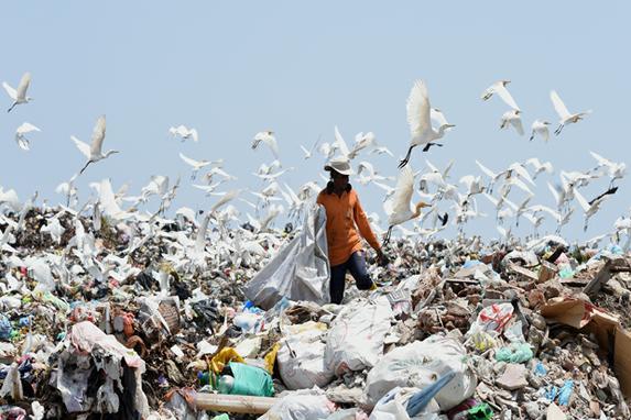 FOTOS DO DIA (Trabalhador cingalês em um aterro em Karadiyana,  subúrbio de Colombo, depois que o aterro principal da cidade fechou após uma montanha de lixo ter caído e  matado 32 pessoas e destruindo 145 casas. Foto: AFP PHOTO / Ishara S. KODIKARA)