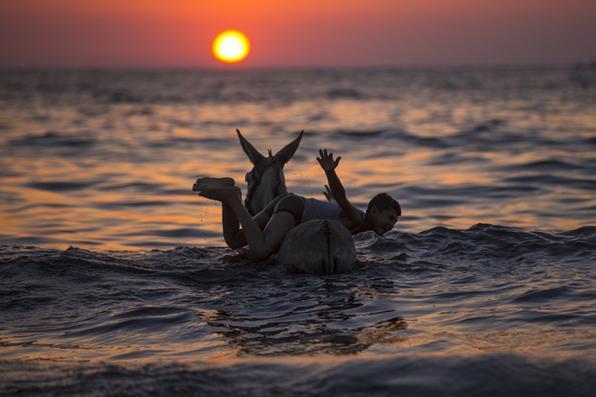 Menino palestino brinca  com um burro no mar durante  pôr do sol na cidade de Gaza . Foto: AFP PHOTO / MAHMUD HAMS -