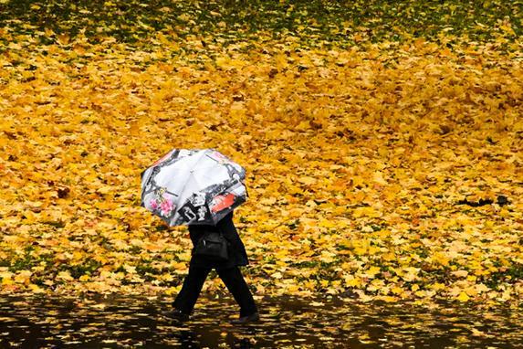 FOTOS DO DIA (Mulher caminha  entre  folhas amarelas caídas no subúrbio de Moscou. Foto: AFP PHOTO / Kirill KUDRYAVTSEV)