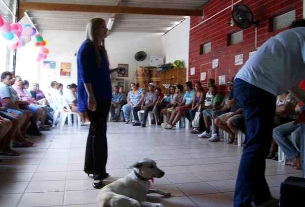 Cães podem ser voluntários no tratamento de pacientes de unidades de saúde e de atenção psicossocial. Foto: Mariana Fabrício/Esp.DP/D.A Press