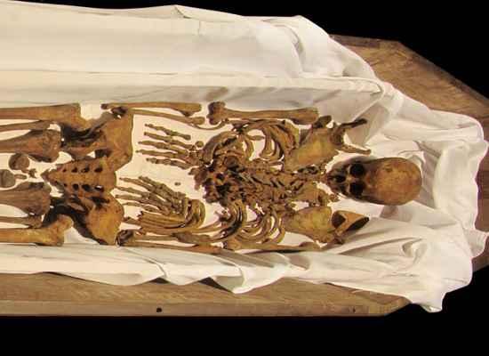 Ossos do imperador foram retirados de cripta em S�o Paulo. Foto: Valter Diogo Muniz/Divulga��o