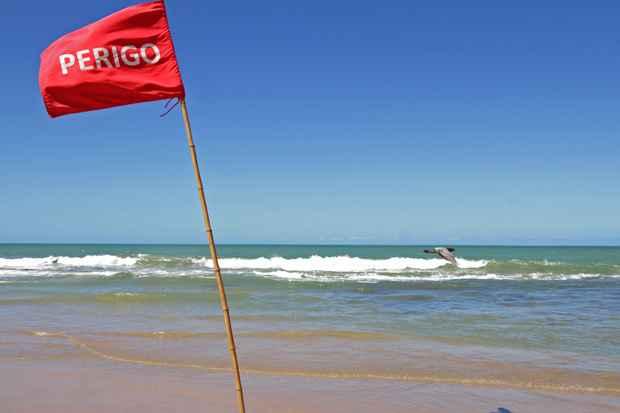 Comissão quer esclarecimentos sobre o que vem sendo feito para prevenir novos ataques de tubarão na orla da Região Metropolitana do Recife. Foto: Roberto Ramos/DP/D.A Press