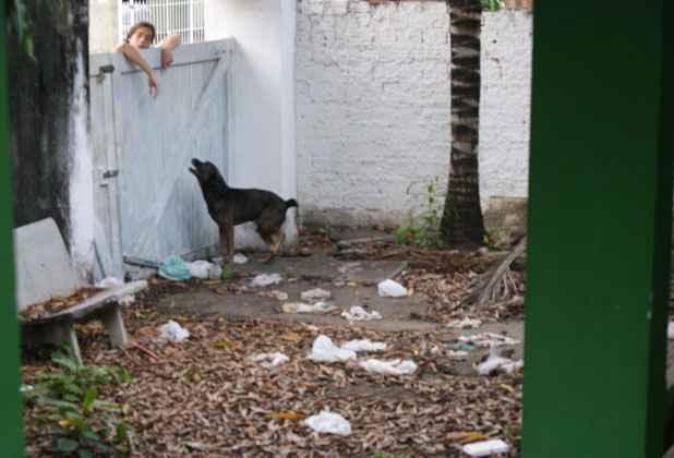 Moradores vizinhos alimentam o cachorro jogando comida por cima do muro. Foto: Mariana Fabrício/Esp.DP/D.A Press