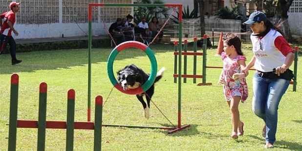 Entre os eventos marcados está a feira PetMix que, entre as atrações, terá demonstrações de Agility. Foto: PetMix/Divulgação