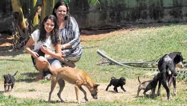 Paola, a mãe, Ana Paula, e alguns dos 12 cachorros acolhidos por elas em casa. Crédito: Ed Alves/CB/D.A Press