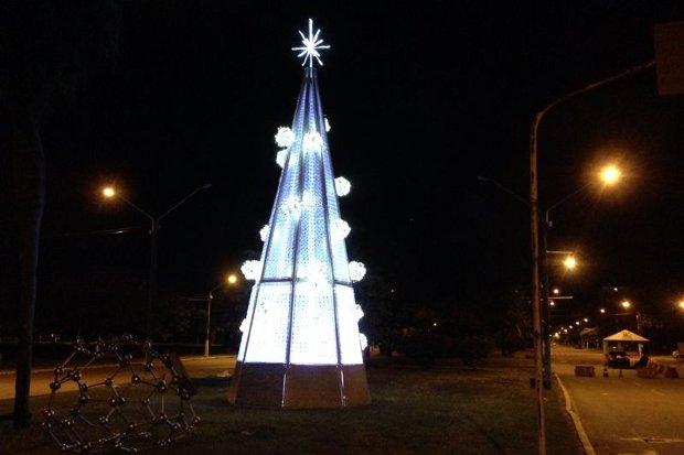 Árvore será adornada por 68 lâmpadas. Foto: Lead Assessoria/Divulgação