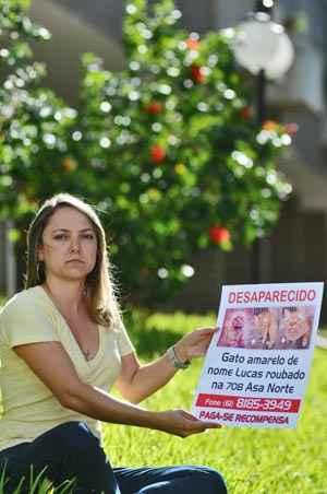 A bacharel em direito Luana Correa com o cartaz que espalhou pelos pet shops da cidade: � o segundo desaparecimento do gato Lucas, que j� foi furtado anteriormente ((Breno Fortes/CB/D.A Press))