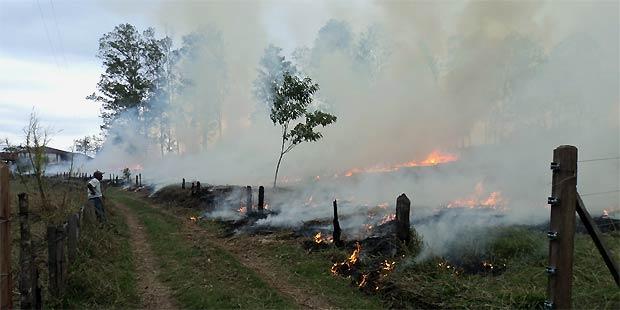 O inc�ndio foi controlado pela Pol�cia Militar e Corpo de Bombeiros. Foto: Pol�cia do Meio Ambiente