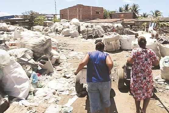 Participantes ganham uma bolsa de R$ 300 durante a capacita��o de dois meses (Alcione Ferreira/DP/D. A Press)