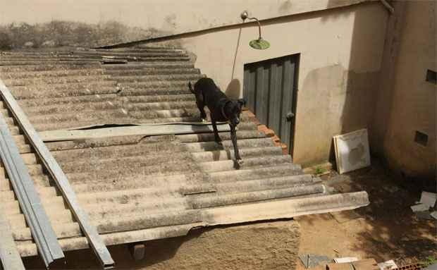 Segundo os moradores do entorno, o dono do im�vel � um m�dico que usa o endere�o como uma esp�cie de dep�sito e n�o mora no local foto: Edesio Ferreira/EM/D.A Press (Edesio Ferreira/EM/D.A Press)