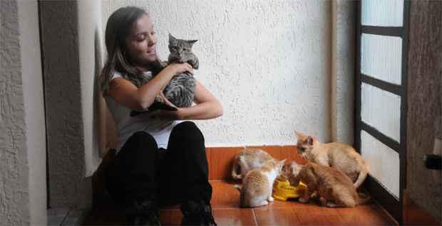 Ana Carolina denuncia que a situa��o dos animais abandonados na Grande BH chegou a um ponto cr�tico Foto: Beto Novaes/EM/DA Press (Beto Novaes/EM/DA Press)