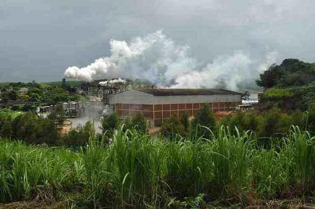 Pernambuco recebe investimentos diversos na cana, como a Vetrel, que produz bioderivados em Vit�ria de Santo Ant�o (Ricardo Fernandes/DP/D.A.Press)