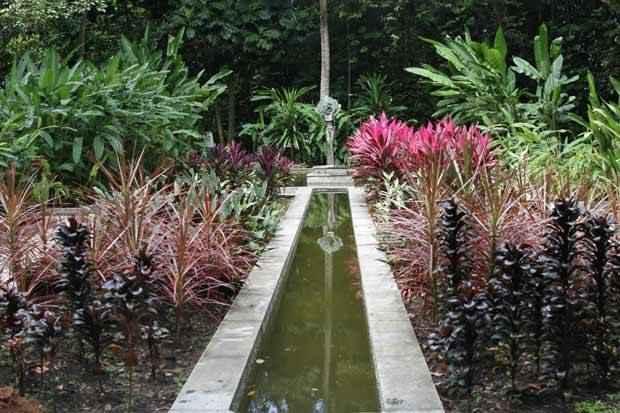 Jardim Botânico do Recife comemora 35 anos em agosto. Foto: Alcione Ferreira/DP/DA Press
