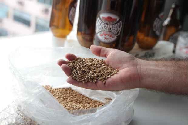 O malte é um dos ingredientes principais na preparação. Foto: Roberto Ramos/DP/D.A Press