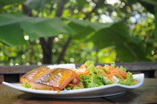 Saladas e sanduíches leves para começar a semana. Foto: Guilherme Veríssimo/Esp. DP/D. A Press