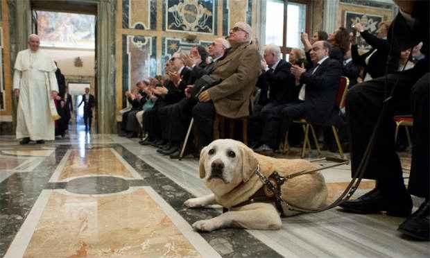 Oficialmente, a Igreja Católica não tem uma posição sobre a vida após a morte para animais. Foto: Reuters/Osservatore Romano