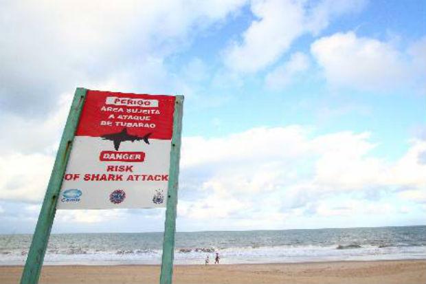 Placa indica perigo de ataque de tubarão na praia de Boa Viagem.Foto: Paulo Paiva/DP/D.A Press