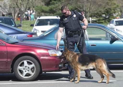 Policial do Capitólio usa um cão farejador após informes sobre um tiroteio. Foto: Saul Loeb/AFP