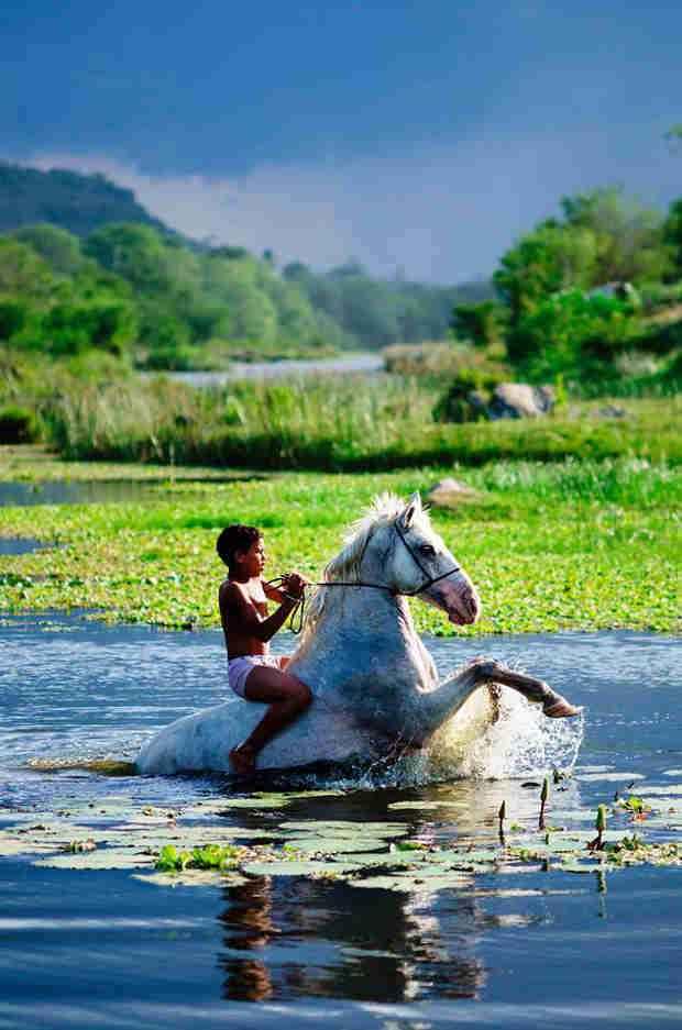 Imagem vencedora do World Wetlands Day Youth Photo Contest (Helder Santana/Flickr)