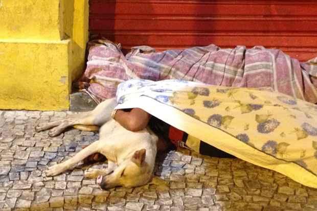 Madona era sempre vista acompanhada de seus cinco cachorros. Foto: Teresa Maia/DP/D.A Press