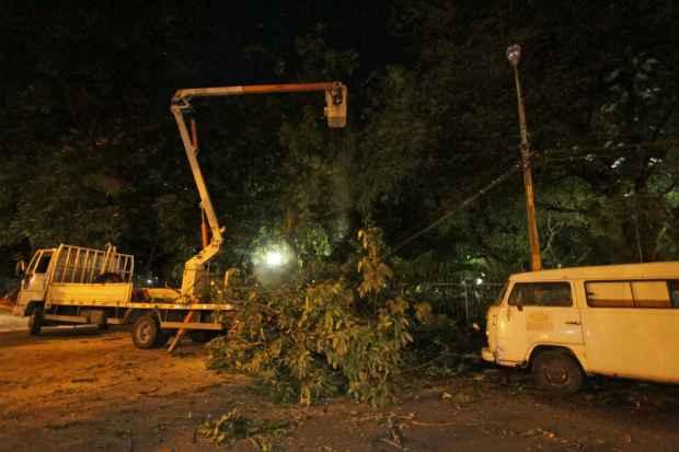 Equipe da Emlurb corta o resto do árvore e retira galhos presos na fiação. (Foto: Roberto Ramos/DP/D.A Press)