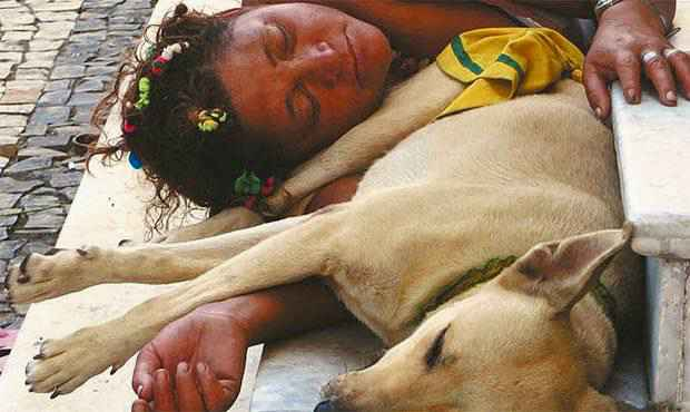 Joselma ficou famosa entre frequentadores do bairro por seu amor aos animais. Foto: Teresa Maia/DP/D.A Press