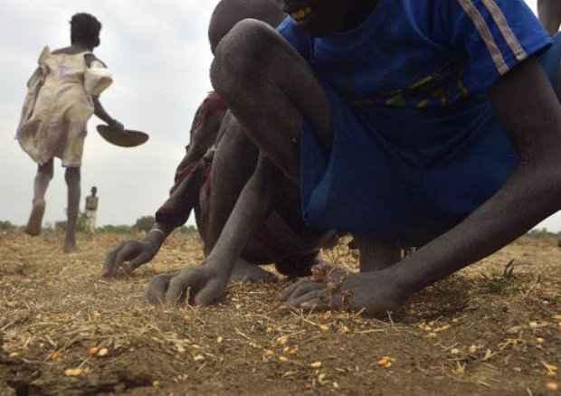 Crianças do Sudão do Sul recolhem grãos na cidade de Nyal. (Foto: Tony Karumba/AFP Photo)