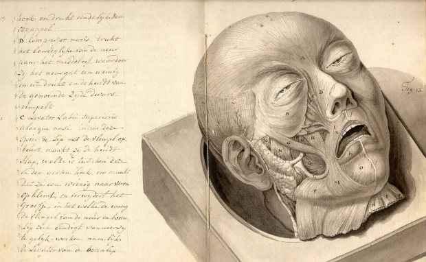 Crédito:  Museu Nacional de Medicina dos EUA