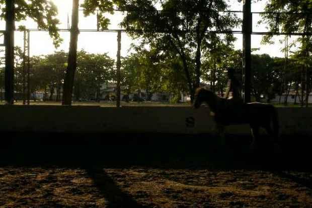 Pista de hipismo no Caxanga Golf Clube. Foto: Bernardo Dantas/ Esp. Aqui PE