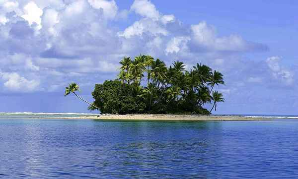 Neste arquipélago, existem mais de mil espécies de peixes para conhecer. Foto: Reprodução