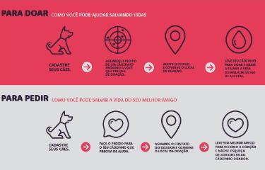 Passo a passo sobre o aplicativo é explicado no site. Foto: Divulgação/ www.projetosangueamigo.com.br