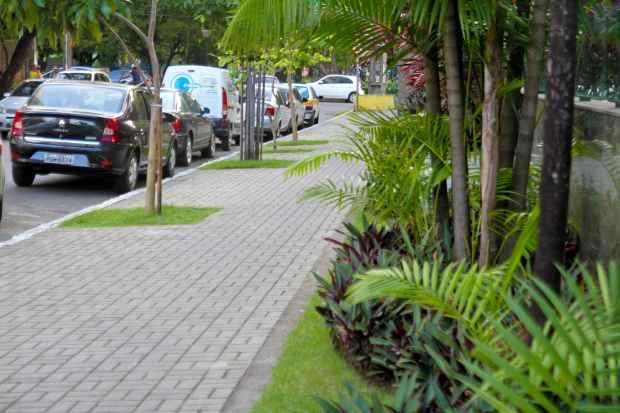 Calçadas ideais devem ser niveladas, acessíveis e arborizadas. Foto: Guilherme Veríssimo/Esp.D.A.Press.