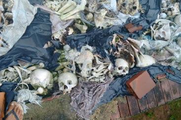 Imagem registrada no dia 2 de setembro, por morador que prefere não se identificar, mostra possível vilipêndio a cadáveres. Foto: Cortesia