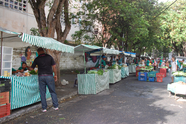 Foto: Eduardo Amorim/Centro Sabi� (H� 243 produtos comercializados na feira, a depender da safra.)