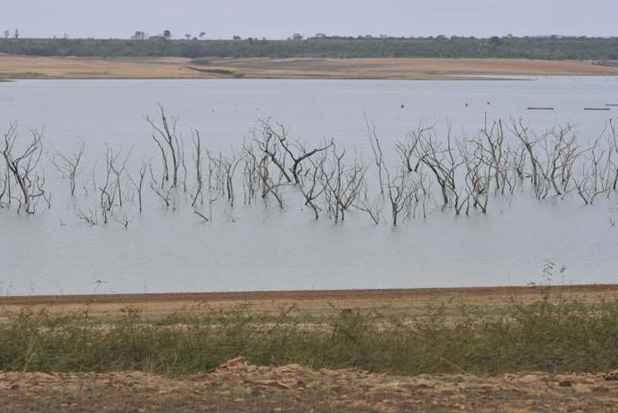 Represa de Três Marias foi uma das observadas na pesquisa. Dados mostram que lago chegou a perder 14,8 quilômetros cúbicos de água, do total de 19,5km3 (foto: Juarez Rodrigues/EM/D.A Press)