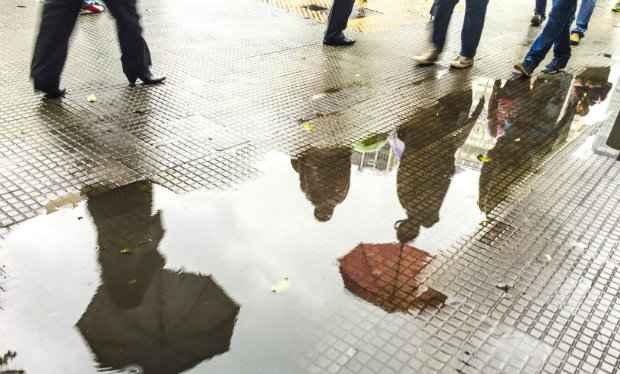 A chuva provocou queda de árvores em algumas áreas da cidade. Foto: Paulo Pinto/ Fotos Públicas (A chuva provocou queda de árvores em algumas áreas da cidade. Foto: Paulo Pinto/ Fotos Públicas)