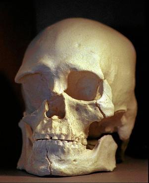Homem de Kennewick foi desenterrado para investigação de seu material genético. Foto: Elaine Thompson/AFP