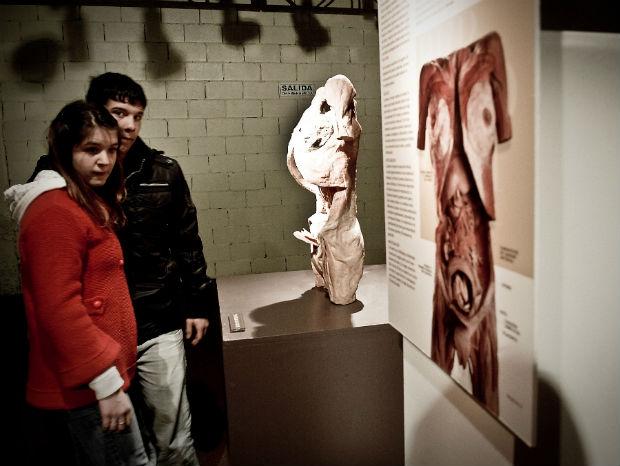 """Exposição """"O Fantastico Corpo Humano"""". Foto: Francisco Lorentz / Divulgação"""