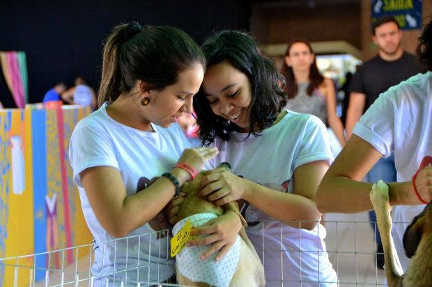 GiGi Pet Sitter promove evento de adoção na FAFIRE neste sábado. (Foto: GiGi Pet Sitter/Divulgação)