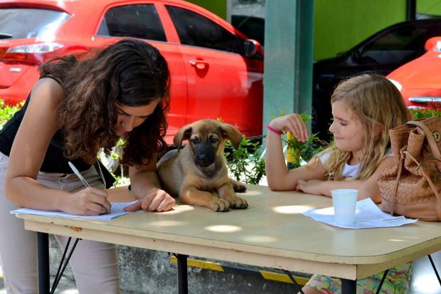 Foto: Gigi Pet Sitter/Divulgação