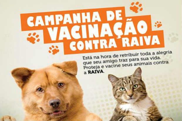 Segundo a Secretaria Estadual de Saúde, existem mais de 100 mil animais no Agreste pernambucano. Foto: Divulgação