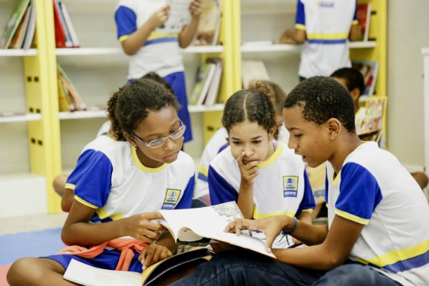 Acervo já possui 12 mil exemplares. Foto: Andre Rego Barros/PCR/Divulgação