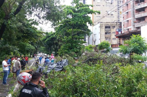 Foto: Ducler / Divulgação