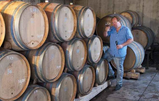 O país desponta na produção de vinhos. Da uva congelada vem o ice wine. Foto: OTMPC/Divulgação