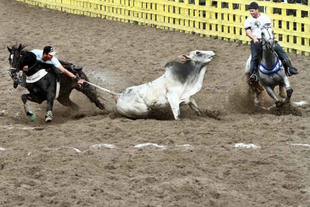 STF considerou que vaquejada causa sérios danos aos animais durante a prática. Foto: Alcione Ferreira